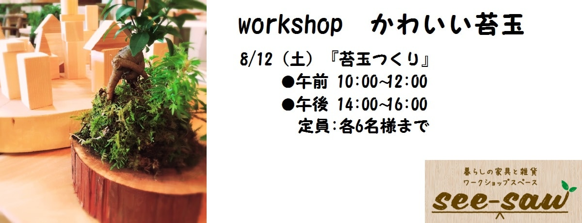 see-saw workshop かわいい苔玉
